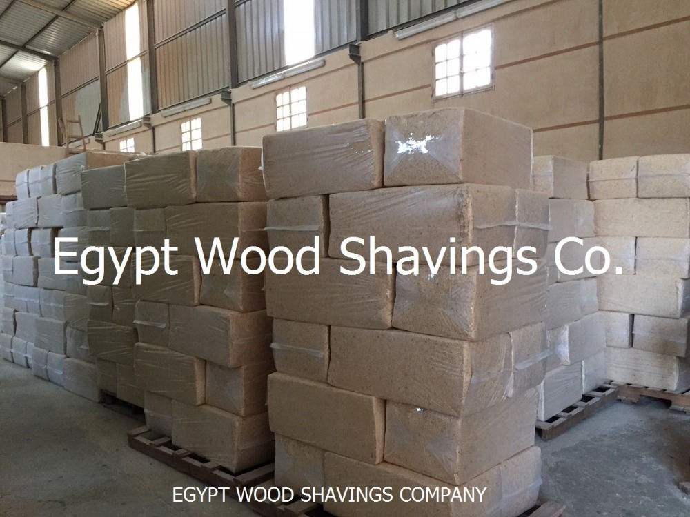 White wood shavings and saw dust for horses bedding and poultry farms with very competitive prices