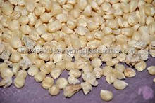 Natural Yellow Dried Corn / Yellow Corn Maize for Animal Feed