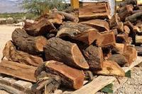 cheap price firewood energy