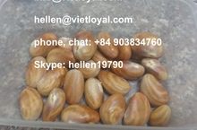 FROZEN JACK FRUIT SEEDS- HIGH QUALITY -BEST PRICE