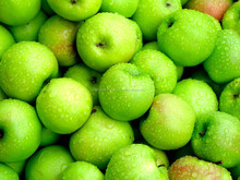 Green apple / Granny Smith Apple