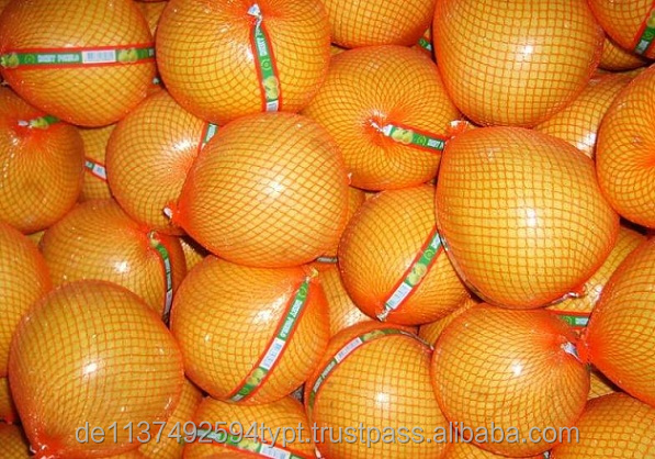 New Fresh Honey Pomelo For Sale
