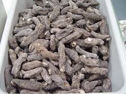 sea cucumber 4-5 cm dried with low salt