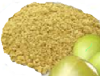 Premium Grade Amla Powder Foe Bulk Suppliers
