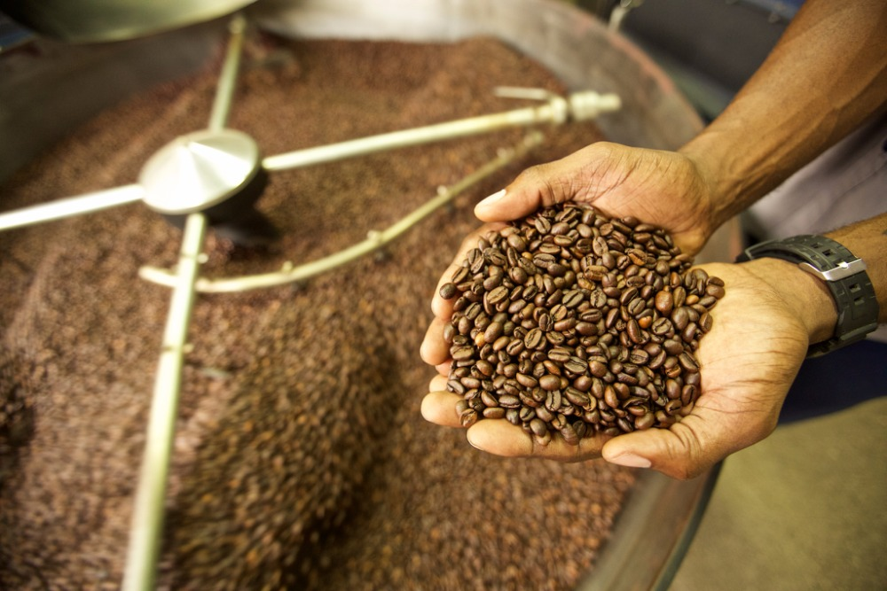Roasted Arabica Coffee Beans from Vietnam