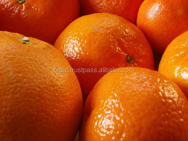 2016 High Quality Oranges Mandarin Oranges/naranjas/Orangen/apelsiner/appelsiner/oranges from Pakistan