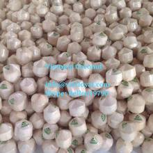 cheap Fresh Semi Husk Coconuts for sale 100% natural dry coconut