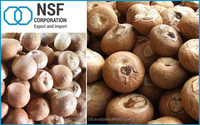 Natural Raw Dried Betel Nuts