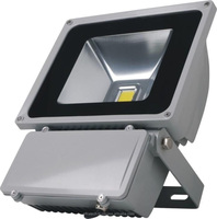 LED Flood light 100W Low Cost