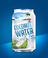 Tropical beverage 330ml Aluminum canned Pure coconut water