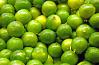 FRESH LIME WITH CHEAPER PRICE AND GOOD QUALITY