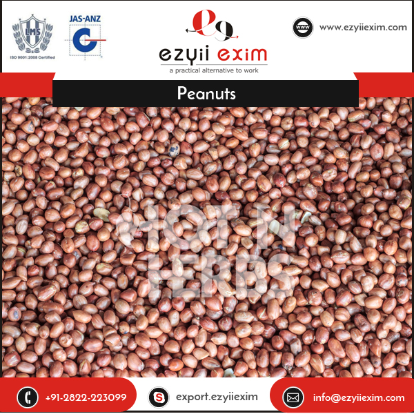 Food Grade Highly Pure Raw Peanuts in Shell Roasters