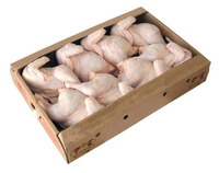Halal Whole Frozen Chicken, Feet, Paws, Breast, Thights, Drumstick