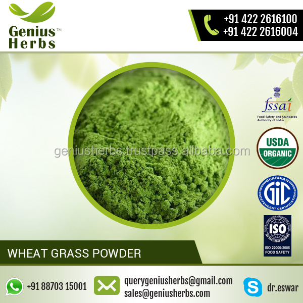 Blood Purifying Wheat Grass Powder from Top Ranked Supplier for Sale