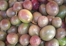 Passion Fruits. Fresh, Healthy And Juicy