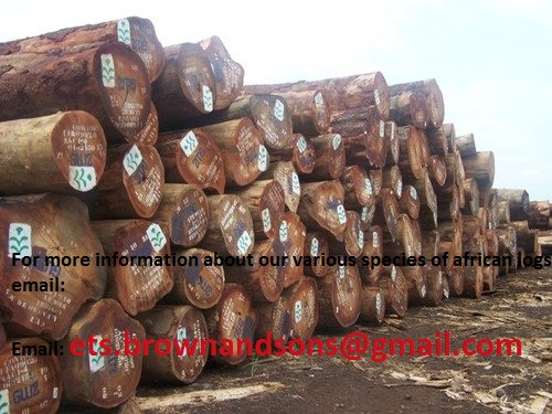 Sell African hard woods, logs, bubinga, Iroko, Tali, Doussie, sapelli and many other skype:premium.trading.co.ltd
