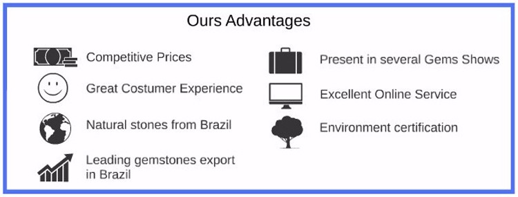 1. Our advantages