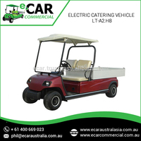 ECAR - 2 Seats Electric Delivery Van Prices LT-A2.H8