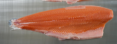 Frozen IQF Pink Salmon Portion / Salmon Fish Fillet/Cod Fish Fillets ,Frozen Basa Fish Fillet