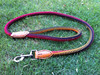 Eco Friendly Hot Colorful Decorative Pet Dog Leashes