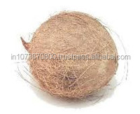 Fresh Coconuts exporters to South Africa