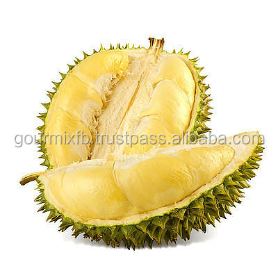 Malaysia Natural Durian Powder/100% Freeze Dried/GMP HALAL/JUICE INGREDIENT/HIGH QUALITY/FRUIT EXTRACT