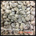 Arabica Coffee 100% [Green Bean]