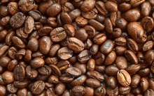 ARABICA COFFEE, ROBUSTA COFFE, ROASTED COFFEE BEANS, COCOA