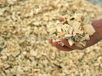 Wood chip for making pulp