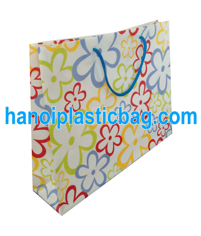 HDPE cotton fabric handle bag Drawstring bag Rope handle bag
