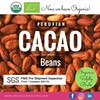 Cacao Beans For Sale Fine Aroma