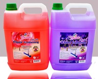 Dream Floor Freshening Cleaner, Tile Cleaner - 5Liter