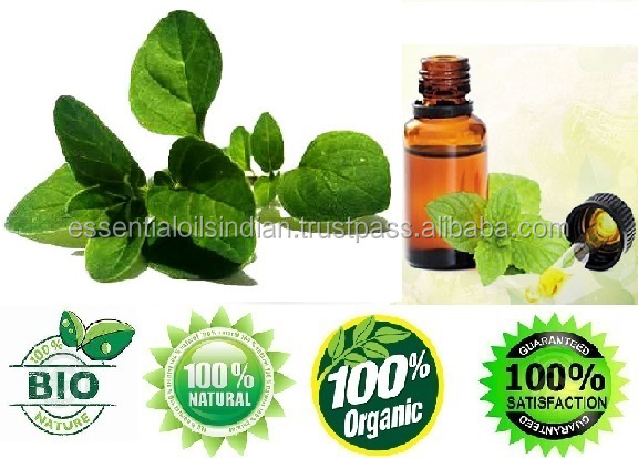 100% Certified Pure and Natural Cactus Seed Oil for Herbal Medicine