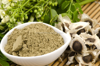 Moringa oleifera seed / bulk moringa seed best prices for sale