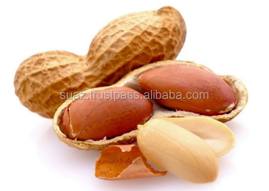 Raw Peanuts in Shell , Pakistani Peanuts Exporter
