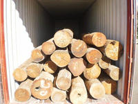 AUSTRALIAN SPOTTED GUM AND BLACKBUTT LOGS