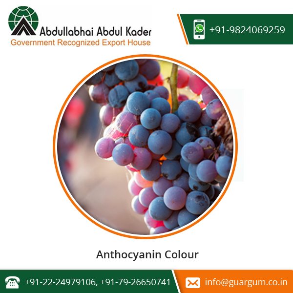 Anthocyanin Colour - E 163