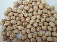 Quality 9mm Chickpeas