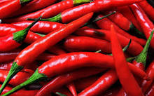 Fresh Red Chilli Pepper with good price