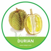 HIGH QUALITY FRESH DURIAN // VIETNAMESE FRESH FRUIT