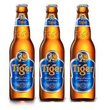 whole sale tiger beer bottle 330ml FMCG product