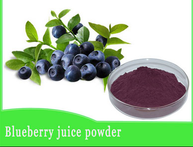 Best Price blueberry Extract
