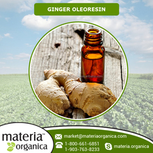 2016 Fresh and Natural Ginger Oil from Certified Company