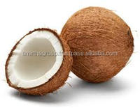 POLLACHI FRESH MATURE COCONUT EXPORT IN CONTAINER