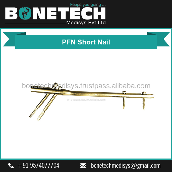 Finest Quality Stainless Steel PFN Short Nail