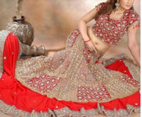 Exclusive Indian Hot lehenga choli 2016