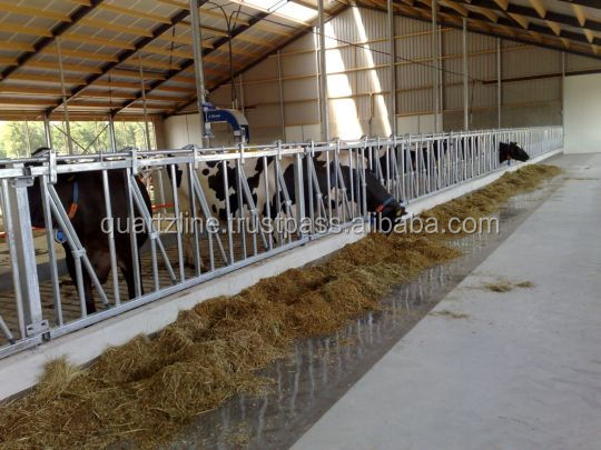 Industrial livestock animal feeding epoxy floor coating