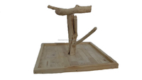 Fun and Healthy Wood Toys - PlayStand