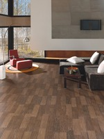 Porcelain Tile (Rectified Wood Tile) 29,3 x 59,3 - SLAB Roble