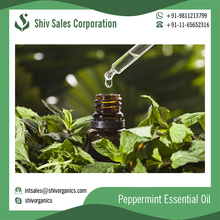 Wholesale 100% Pure Natural Peppermint Oil in Bulk Quantity